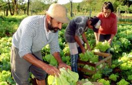 agricultura_familiar2