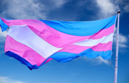 bandera-trans_EDIIMA20170331_0411_22
