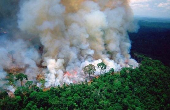 amazonia-pegando-fogo