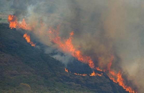 Uma sucessão de incêndios florestais de grandes proporções se alastram na Região Serrana.  Mata em chamas em Itaipava (Fernando Frazão/Agência Brasil)